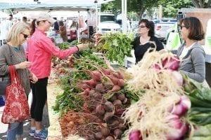 farmer's market in wine country